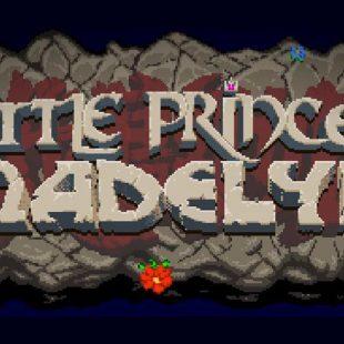 'Battle Princess Madelyn' recibe financiación en Kickstarter y se fijan nuevos objetivos